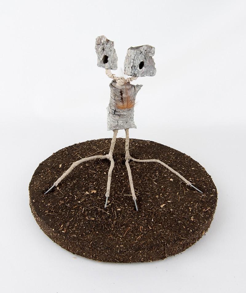 Serie Críptidos - Artista Antonio Morales Prats - Proyecto Kryptos Natura