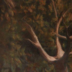 Detalle Obra Árbol - Pintura - Serie Natura - Artista pintor Antonio Morales Prats