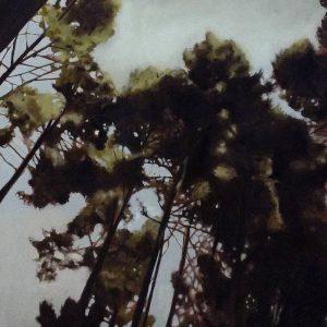 Detalle Obra Bosque perdido II - Pintura - Serie Natura - Artista pintor Antonio Morales Prats