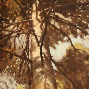Detalle Obra Bosque perdido - Pintura - Serie Natura - Artista pintor Antonio Morales Prats