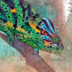 Detalle Obra Camaleon - Serie Colorzoo - Artista Antonio Morales Prats