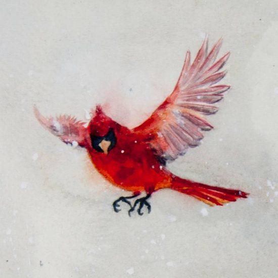 Detalle Obra Cardinalis cardinalis - Serie Colorzoo - Artista Antonio Morales Prats