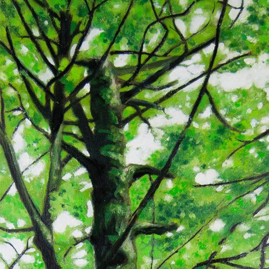 Detalle Obra Fagus Sylvatica I - Pintura - Serie Natura - Artista pintor Antonio Morales Prats