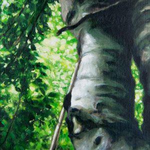 Detalle Obra Fagus Sylvatica II - Pintura - Serie Natura - Artista pintor Antonio Morales Prats