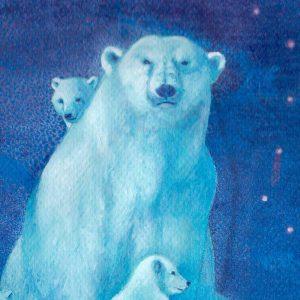 Detalle Obra Oso polar - Serie Colorzoo - Artista Antonio Morales Prats
