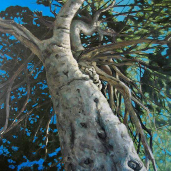 Detalle Obra Pino - Pintura - Serie Natura - Artista pintor Antonio Morales Prats