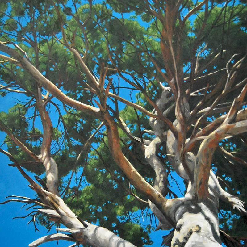 Detalle Obra Pino centenario - Pintura - Serie Natura - Artista pintor Antonio Morales Prats