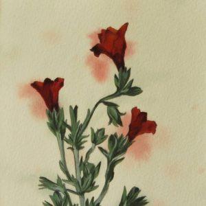 Detalle Obra Planta 2 - Pintura - Serie Natura - Artista pintor Antonio Morales Prats