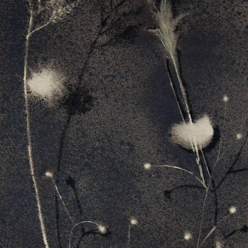Ecosistema Hierba del artista alicantino Antonio Morales Prats. Proyecto Kryptos Natura Ecosistemas