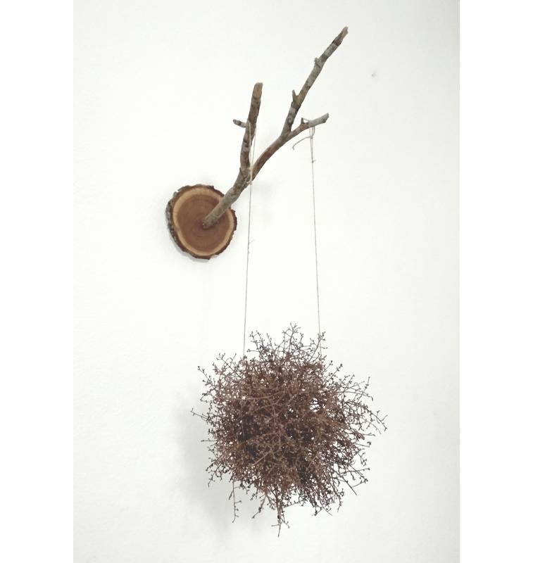 Escultura Instalacion Nido Colgante – Artista Antonio Morales – Proyecto Kryptos Natura Plantae