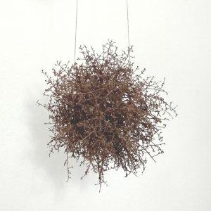 Escultura Nido colgante - Artista Antonio Morales Prats - Proyecto Kryptos Natura Plantae