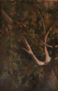 Obra Árbol - Pintura - Serie Natura - Artista pintor Antonio Morales Prats