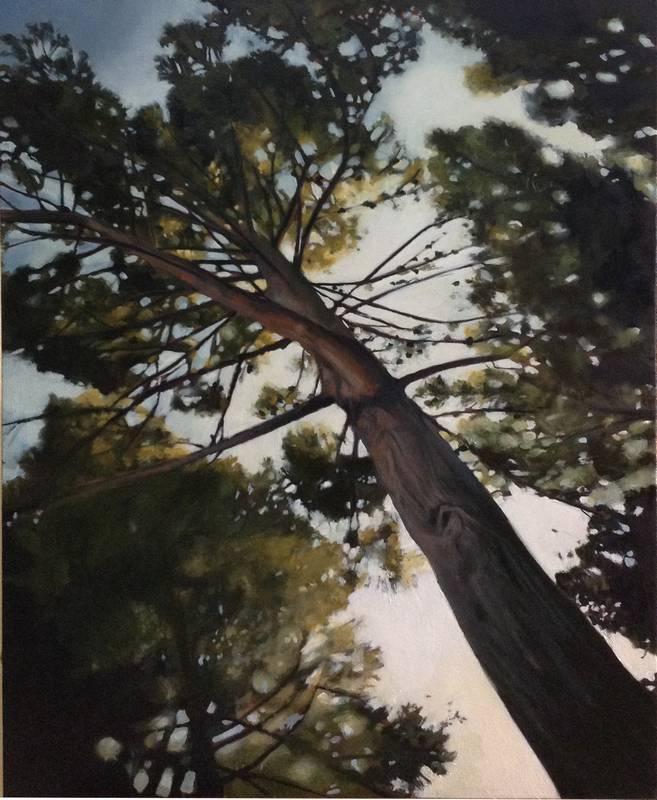 Obra Bosque perdido III - Pintura - Serie Natura - Artista pintor Antonio Morales Prats