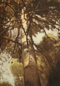 Obra Bosque perdido - Pintura - Serie Natura - Artista pintor Antonio Morales Prats