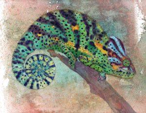Obra Camaleon - Serie Colorzoo - Artista Antonio Morales Prats