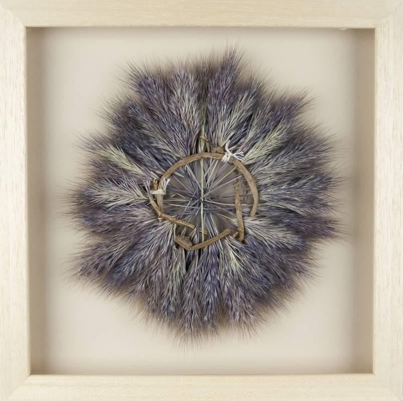 Obra Cyclus III - Artista Antonio Morales Prats - Proyecto Kryptos Natura > Plantae