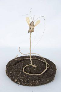 Obra Enrairea - Escultura - Artista Antonio Morales Prats - Proyecto Kryptos Natura Críptidos