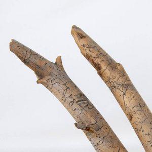 Obra Mensaje Xilofago Escultura Proyecto Kryptos Natura Plantae del Artista Antonio Morales Prats