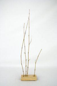 Obra Naturaleza II - Escultura - Proyecto Kryptos Natura Plantae - Artista Antonio Morales Prats