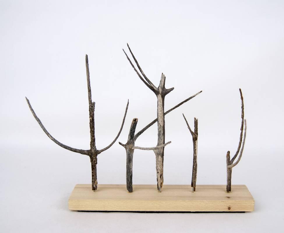 Obra Naturaleza IV – Escultura – Proyecto Kryptos Natura Plantae – Artista Antonio Morales Prats