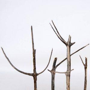 Obra Naturaleza IV - Escultura - Proyecto Kryptos Natura Plantae - Artista Antonio Morales Prats