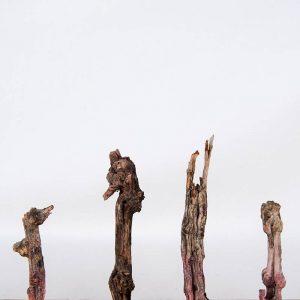 Obra Naturaleza XIII - Escultura - Proyecto Kryptos Natura Plantae - Artista Antonio Morales Prats