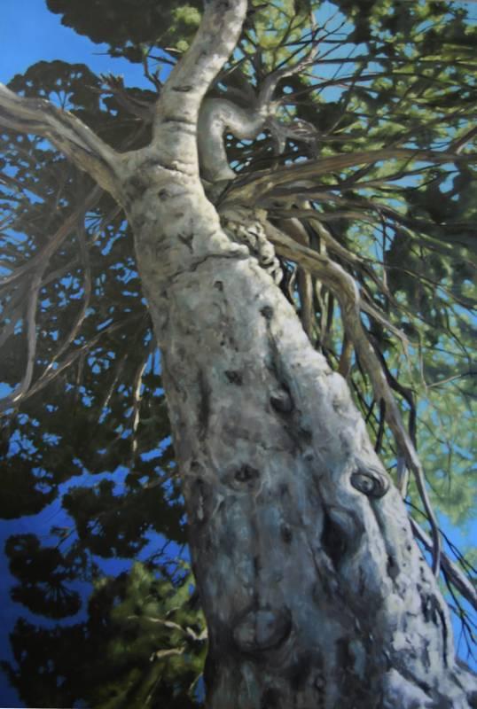 Obra Pino - Pintura - Serie Natura - Artista pintor Antonio Morales Prats
