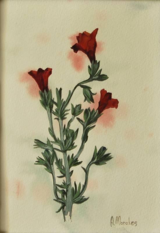 Obra Planta 2 - Pintura - Serie Natura - Artista pintor Antonio Morales Prats