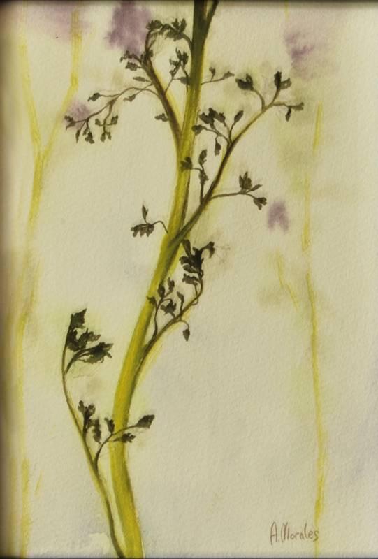 Obra Planta - Pintura - Serie Natura - Artista pintor Antonio Morales Prats
