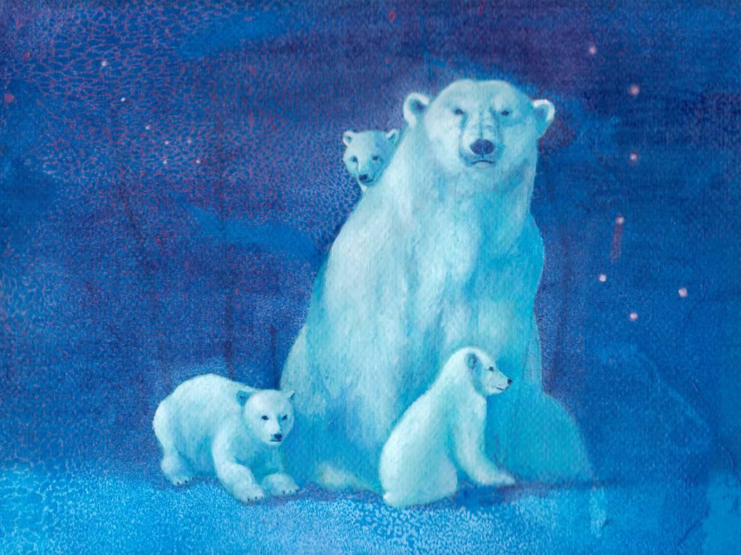 Obra Oso Polar - Serie Colorzoo - Artista Antonio Morales Prats